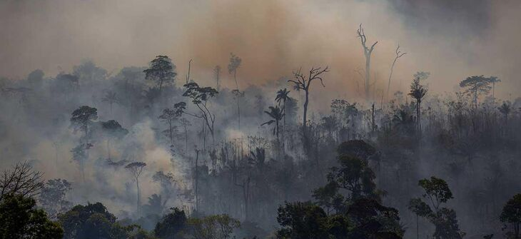 Wildfires in Brazil bring climate apocalypse closer