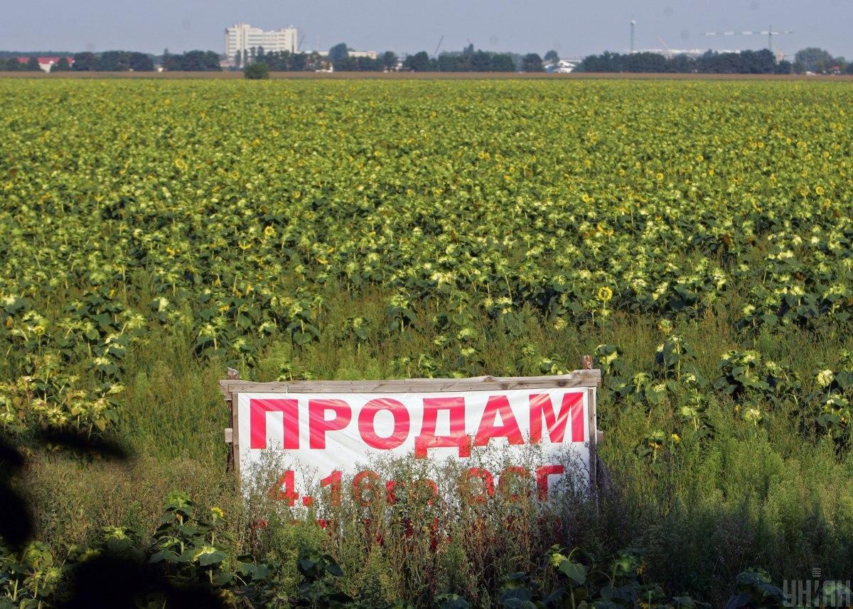 Підписано закон про продаж землі, влада визнала трагедію в Одесі: Топ-5 подій тижня